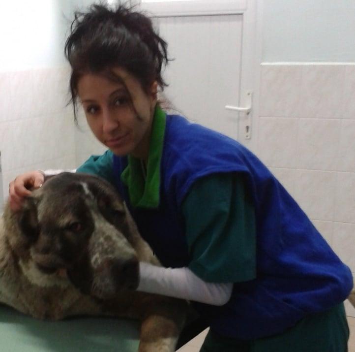 Д-р Деница Русева: Заболявания при хората, причинени от бълхи и кърлежи. Токсоплазмоза