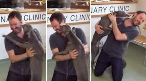 Откраднато куче изригва от щастие, когато отново среща стопанина си