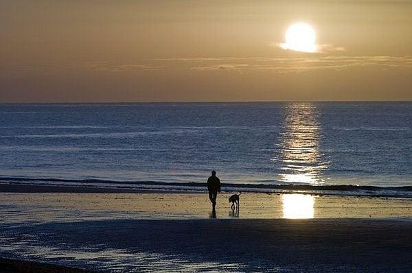 За да спаси кучето си, българин от Бургас се хвърля в ледените води на морето