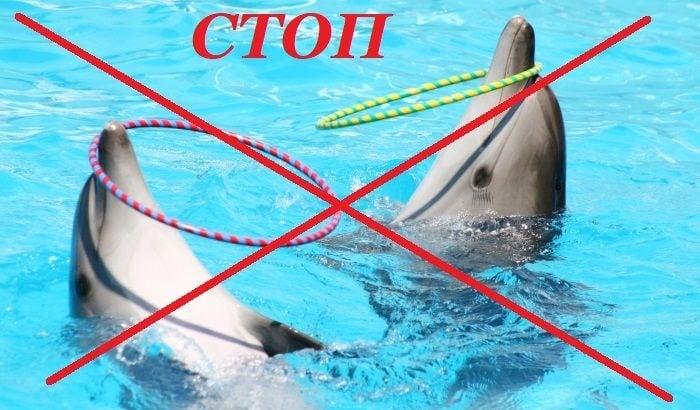 КРАЙ на делфинариумите в Индия