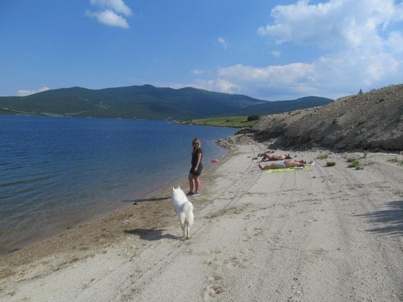 На плажа във Варна бе застреляно домашно куче - търси се Зоополицията!