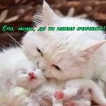 Да те събуди мама