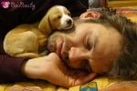 Двамцата си спим...