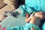 Как да ги събуди човек ...