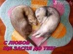 """""""С любов ще заспя до теб!"""""""