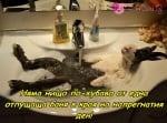 Успокояваща баня