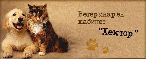 "Ветеринарен кабинет ""Хектор"""