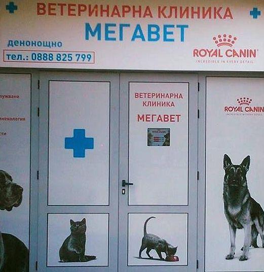 """Ветеринарна клиника """"Мегавет"""""""