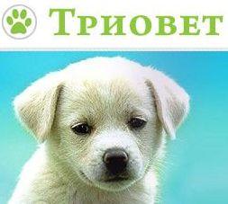 """Ветеринарна клиника """"Триовет"""""""