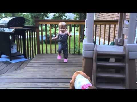 Танцуващо момиченце и басет стават новите звезди на YouTube