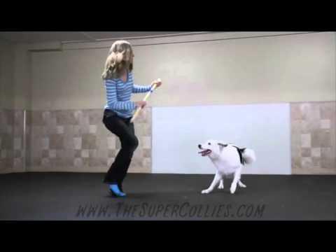 Уникално - момиче научава кучето си да танцува като нея