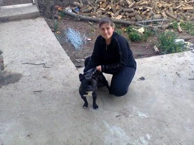 Аз и моето куче