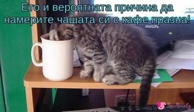 И ако кафето ви изведнъж изчезне ...
