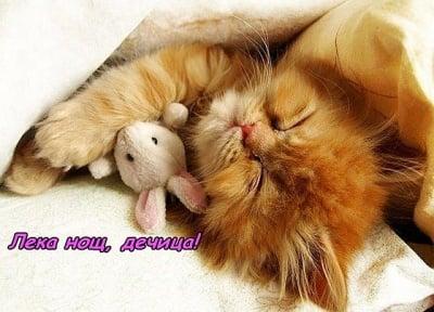 Сладки, сладки сънища