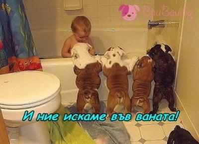 Неделна баня