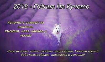 2018 - Година на Кучето