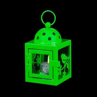 Зелен фенер - пиленце