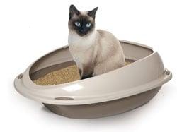 """""""CON SOPRALZO""""  - Тоалетна за котки"""