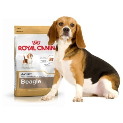 """""""Royal Canin Beagle Adult"""" - Суха храна за кучета от порода Бигъл над 12-месечна възраст"""