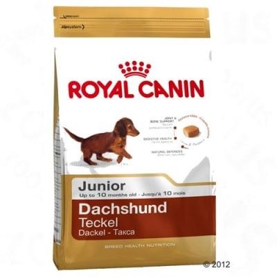 """Royal Canin Breed Dachshund Junior"" - Суха храна за Дакели до 10 месеца"