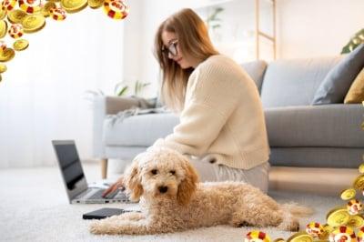 Защо играта в онлайн казино е добра за вас и вашето куче