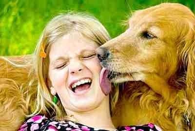 Близане при кучето