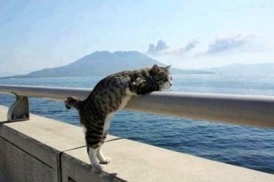 """""""Ах, морето в мен остава! То навярно е, което ме спасява..."""""""