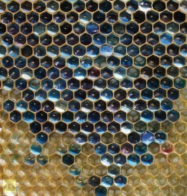 Странен син мед се появи във Франция