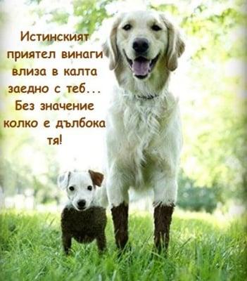 Да бъдеш истински приятел