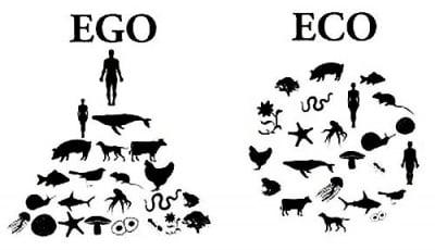 Какво е да бъдеш еко, а не его!