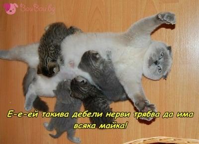 Да бъдеш мама