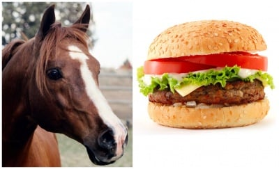 Скандала с конското месо се разраства:  ДНК-тестове за телешките продукти