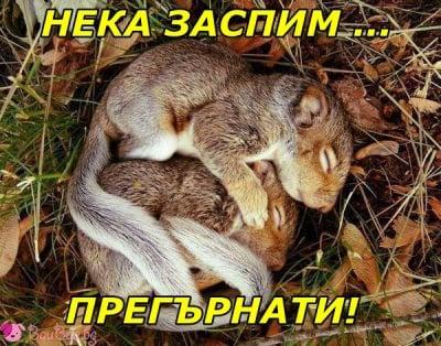 Прегръдка за лека нощ!