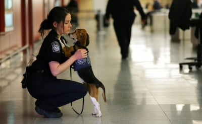 Жена прегръща куче