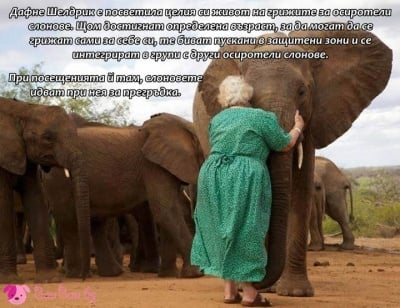 Преданост, любов, доброта