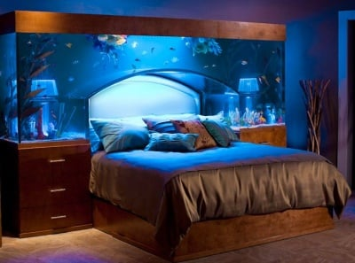 Къде да поставим аквариума?