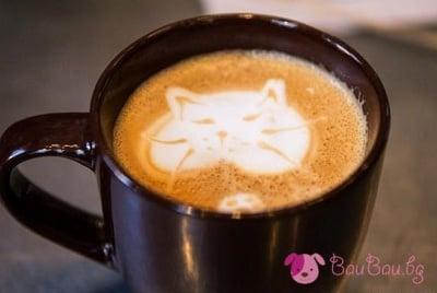 Кафенце, което те кара да мъркаш от кеф