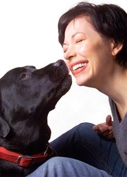 Обучение на кучето: Урок №18. Научете кучето да дава целувка