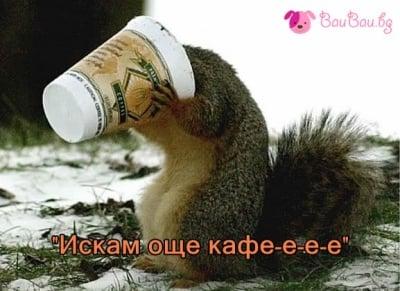 """""""Искам още кафе-е-е-е"""""""