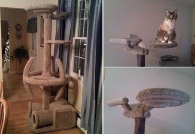 Катерушка за котки