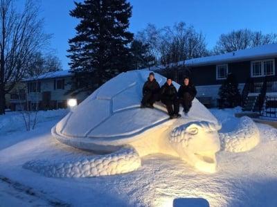 Костенурка от сняг