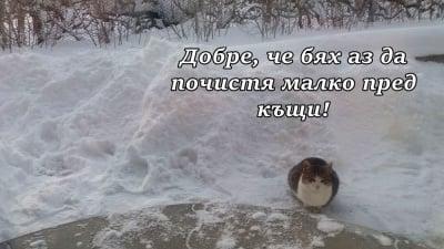 "Снегопочистваща фирма ""КотеМау"""