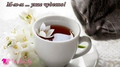 Неделен чай