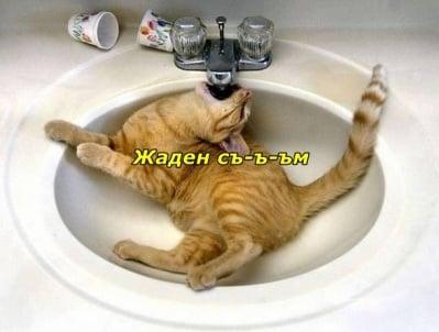 Не си ти, когато си жаден!