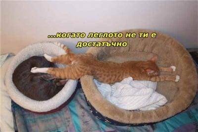 Когато леглото не ти стига...