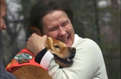 Куче без крайници вдъхновява хора инвалиди