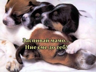 Да заспиш до мама
