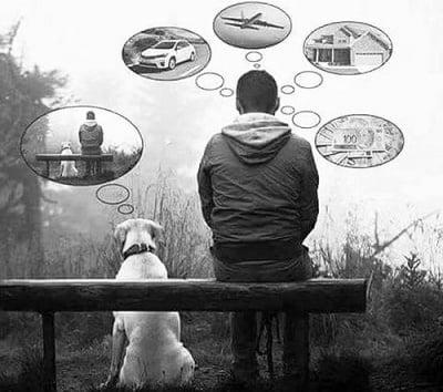 Кучето винаги е щастливо с това, което има!