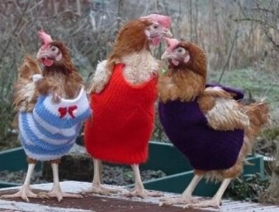 Селски моми