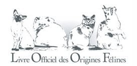 The Livre Officiel des Origines Felines - LOOF